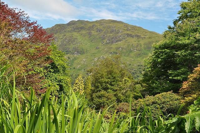 Benmore Botanic Gardens day trips